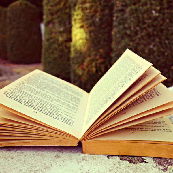 an opened book filled with stories